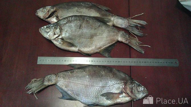 affef9f4e75982 Рыба вяленая, тарань сушеная, лещ, толстолоб, плотва, густера Миколаїв -  зображення