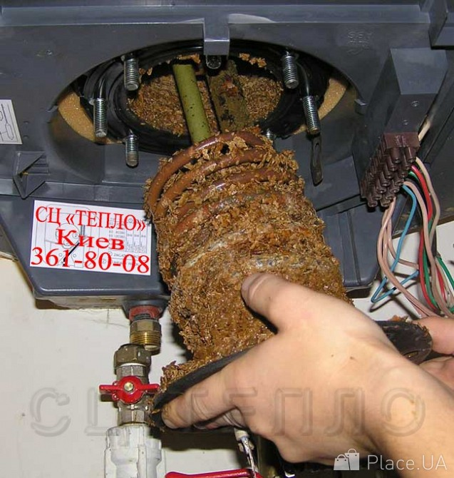 прививочной карты водонагреватель термекс 50 литров шум внутри что делать Совфед закон