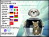 Тест на бешенство Справка собаки выезд за границу Официально ветпаспорт Запорожье