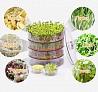 Спраутер для выращивания семян дома Sprouter Provita, Проращиватель доставка з м. Київ