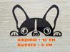 Наклейка на авто Собака Чёрная доставка из г.Киев
