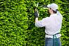Садовник, обрезка сада, садовых деревьев, уход за садом Одеса Одесса