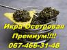 Гарантія Якості!ікра чорна Осетрова( з дикого Осетра) Киев