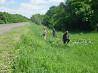 Разнорабочие на кошение травы в Польше Кривой Рог