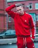 Теплый свитшот Adidas Badge Харьков