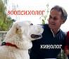 Зоопсихолог, кинолог - дрессировка собак, коррекция поведения. Выезд на дом Киев и обл. или онлайн. Киев