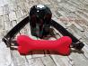 Кляп с изящной и яркой силиконовой косточкой доставка из г.Киев