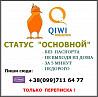 Идентификация киви-кошелька.статус Основной за 5 минут Луганск