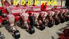 Сівалка пневматична (привідні колеса між секціями) точного висіву Упс-8-03 на фото УПС, Днепр (прод Днепр