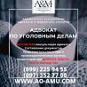 Уголовный адвокат, защита в суде, при допросе и обыске Харьков