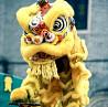 Шоу номер на Китайский Новый год, танец дракона, китайское шоу, заказать выступление на Китайский НГ Киев