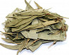 Эвкалипт (листья) 50 грамм Чернигов
