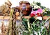 Лекарственные травы (4) Чернигов