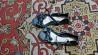 Чёрные женские кожаные босоножки julietta доставка из г.Житомир
