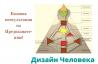 Базова Консультація по Призначенню за методикою Human Design («дизайн Людини»). Киев