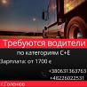 Водитель международных перевозок С+Е. Одиночный и двойной экипаж Житомир